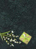 Snowdrop flowers, willow branches and giftbox on Verde Guatemala Stock Photo