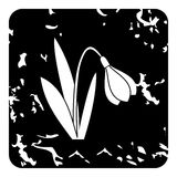 Snowdrop icon, grunge style Royalty Free Stock Image