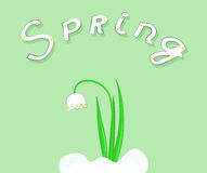 Snowdrop in snow. On a green background with the word spring. Vector illustration Stock Photos