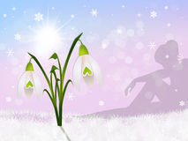Snowdrop in the snow Stock Photography