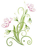 Snowdrop, spring. Colorful spring time decoration, snowdrop Royalty Free Stock Photography