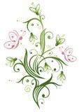 Snowdrop, spring Stock Image