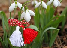 Snowdrop spring flowers with martenitsa. Baba Marta day royalty free stock images