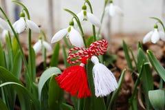 Snowdrop spring flowers with martenitsa. Baba Marta day stock photos
