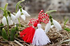 Snowdrop spring flowers with martenitsa. Baba Marta day royalty free stock image