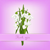 Snowdrop thank you card Stock Image