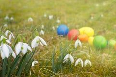Snowdrops和复活节彩蛋在一个绿色草甸 图库摄影