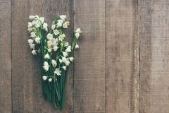 snowdrops报春花花束在木背景的 库存图片