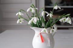 Snowdrops特写镜头和春天标志 库存照片