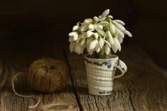 snowdrops花束在一个玻璃花瓶开花 免版税库存照片