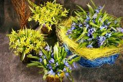 Snowdrops蓝色和黄色floristry花瓶褐色背景 免版税库存图片