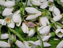 Snowdrops και χρυσό δαχτυλίδι με το διαμάντι Στοκ Φωτογραφίες