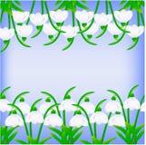 Snowdrops иллюстрации на голубой предпосылке Стоковая Фотография