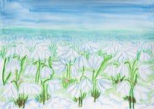 Snowdrops, крася акварель Стоковое фото RF