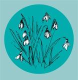 snowdrops stock de ilustración