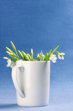 Snowdrops Royalty Free Stock Image