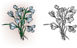 Snowdrops. Elements for the design stock illustration