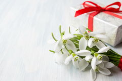 Snowdrops bouquet and a present box royalty free stock image
