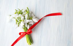 Snowdrops bouquet with red ribbon for a romantic present stock photos