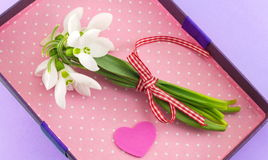 Snowdrops bouquet in romantic box Stock Image