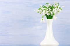 Snowdrops bouquet Royalty Free Stock Photo