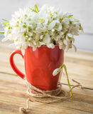 Snowdrops in a Cup. Beautiful delicate snowdrops in a red Cup with a thread on a wooden background concept of spring and flowers Royalty Free Stock Image
