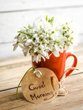 Snowdrops in a Cup. Beautiful delicate snowdrops in a red Cup, and the words good morning on a round piece of paper lies on a wooden background concept of spring Stock Image