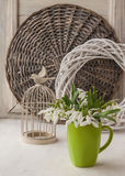 Snowdrops  and decorative vintage cage Royalty Free Stock Image