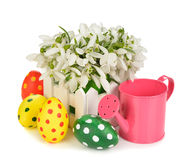 Snowdrops and Easter colored eggs Royalty Free Stock Images