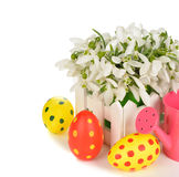 Snowdrops and Easter colored eggs Stock Image