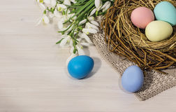 Snowdrops with Easter eggs Stock Images