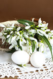 Snowdrops and eggs Royalty Free Stock Photo