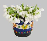 Snowdrops en el florero Fotografía de archivo libre de regalías