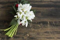 Snowdrops fresco em uma tabela de madeira rústica Foto de Stock Royalty Free