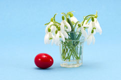 Snowdrops in the glass and easter egg Stock Images