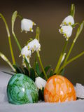 Snowdrops growing out snow with easter eggs Royalty Free Stock Photography