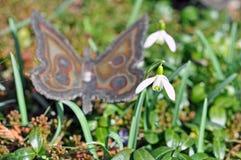 Snowdrops im Garten Lizenzfreie Stockfotos