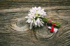 Snowdrops. Isolated over wooden background stock image