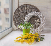 Snowdrops and mimosa on window Royalty Free Stock Photography