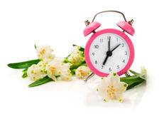 Snowdrops and pink alarm clock Royalty Free Stock Photos