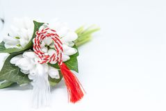 Snowdrops and red and white string martisor on white with copy space east european first of march tradition celebration. Snowdrops and red and white string Royalty Free Stock Image