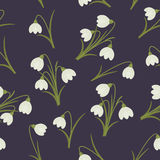 Snowdrops seamless pattern Royalty Free Stock Images