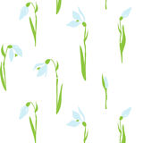 Snowdrops seamless texture Stock Photo