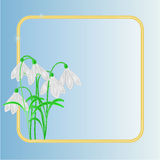 Snowdrops spring flower frame place for text vector Royalty Free Stock Photo