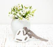 Snowdrops stock photo