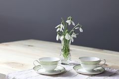 Snowdrops on the table. Spring flowers bouquet. Snowdrops background. Spring flowers on the wooden table. Holiday desk. Holiday fl royalty free stock photo