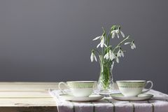 Snowdrops on the table. Spring flowers bouquet. Snowdrops background. Spring flowers on the wooden table. Holiday desk. Holiday fl stock photography