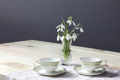 Snowdrops on the table. Spring flowers bouquet. Snowdrops background. Spring flowers on the wooden table. Holiday desk. Holiday fl stock photos