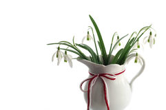 Snowdrops with Traditional Red White Cord Stock Photography