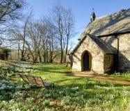 Snowdrops in un churchyard Fotografie Stock Libere da Diritti